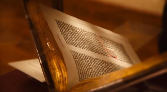 Dal Libro di Giobbe